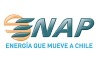 Enap logo